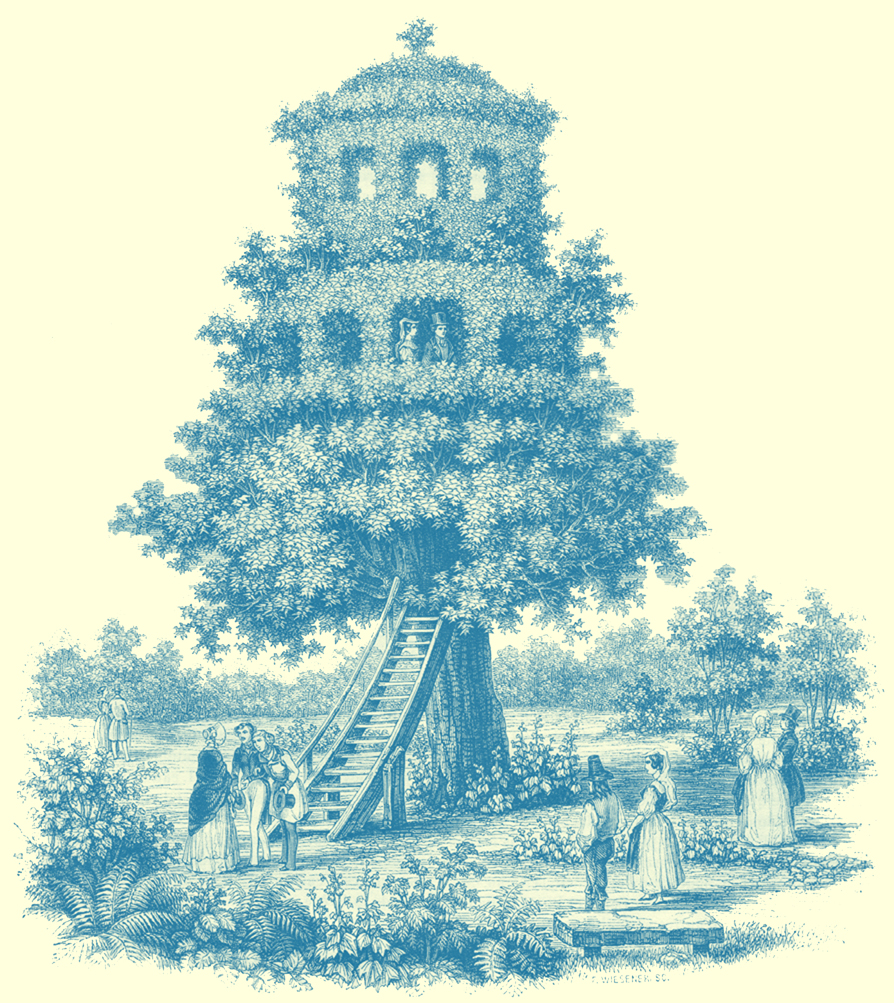 Black and white engraving, signed by F. Weisener, of large tree shaped into a tree house or arbre-belvedere, with two stories.  Two people are on the first story at one window.  There is a stairway, wooden, from the ground to the start of the leaves.  Several people, male and female are on the ground in the fashions of the period, 1843.
