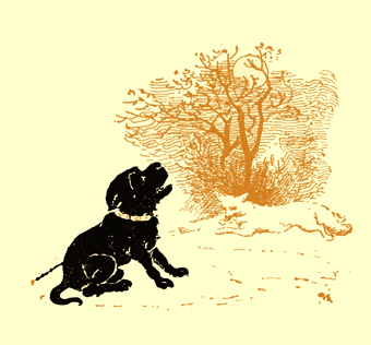 Black and white illustration, by Moyr Smith, of a sitting dog, with a rope attached to a collar, barking in front of a tree. A fox is running between him and the tree.