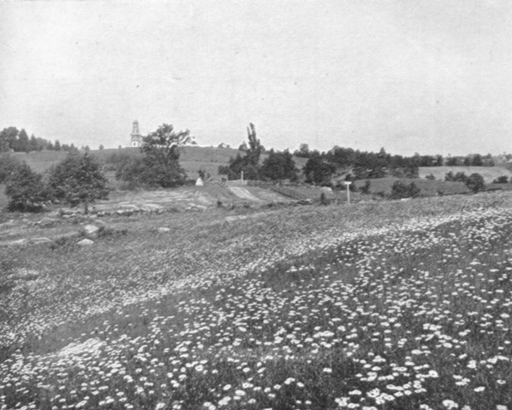 Black and white photograph of Cemetery Hill, Gettysburg, PA, showing a flat field with wild flowers and and a slight rise of the land to a very small hill or ridge in the distance.